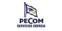 Pecom Servicios Energia